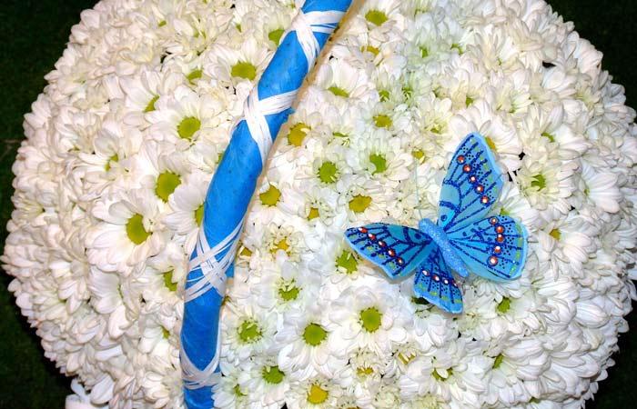 красивые картинки с ромашками