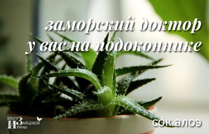 Цветок златоуст лечебные свойства