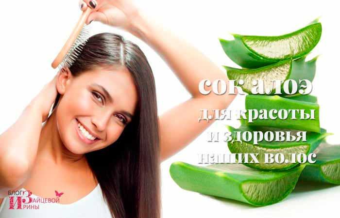 Сок алоэ для красоты и здоровья наших волос