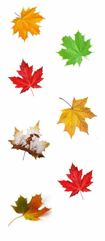Золотая осень в поэзии и музыке блог