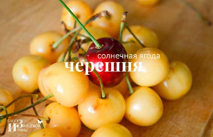 Солнечная ягода черешня