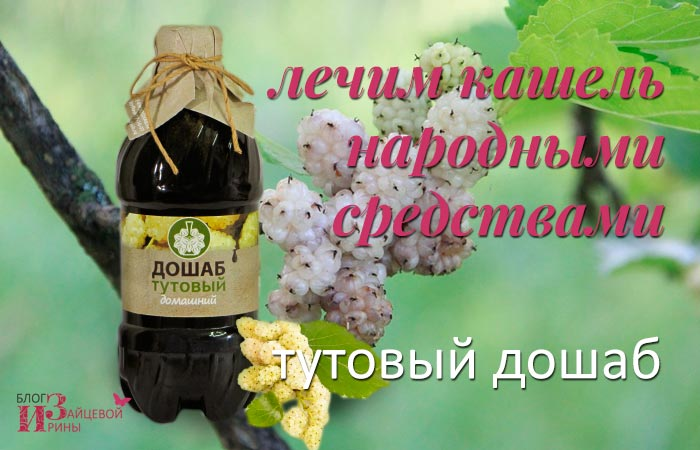 Тутовый дошаб – народное средство от кашля
