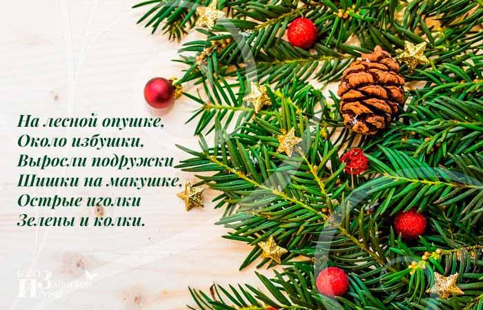 Загадки про новогоднюю ёлку для детей