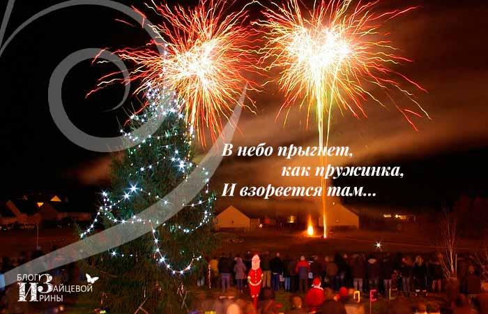 Новогодние загадки-обманки