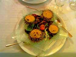 Икра морского ежа – один из самых полезных продуктов для нашего здоровья