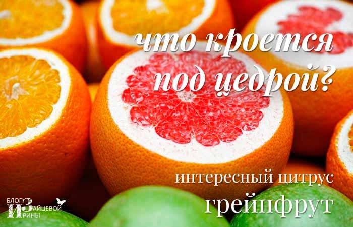 Грейпфрут для здоровья и похудения. Полезные свойства. Польза и вред