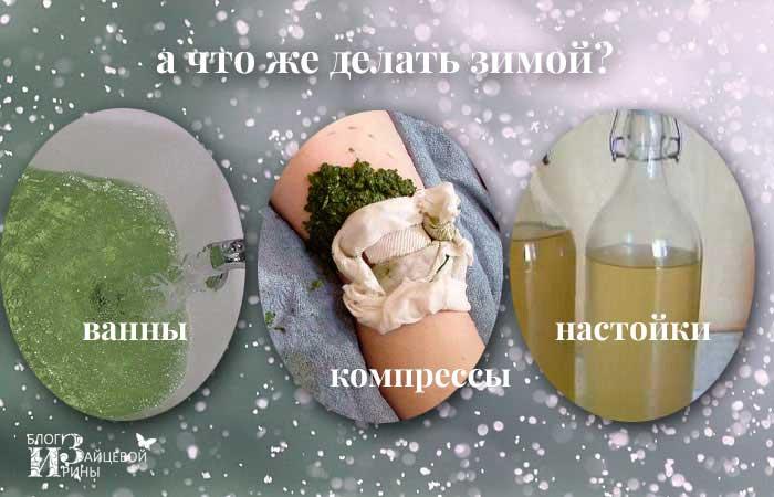 Листья хрена от отложения солей, при болезни и болях в суставах, Блог Ирины Зайцевой