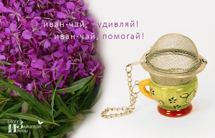 Как заваривать иван - чай