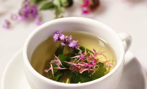 полезные свойства иван чая