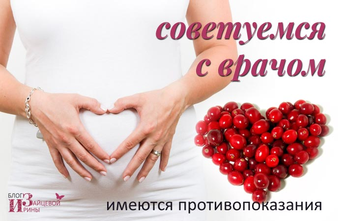 Клюква полезные свойства и противопоказания при беременности