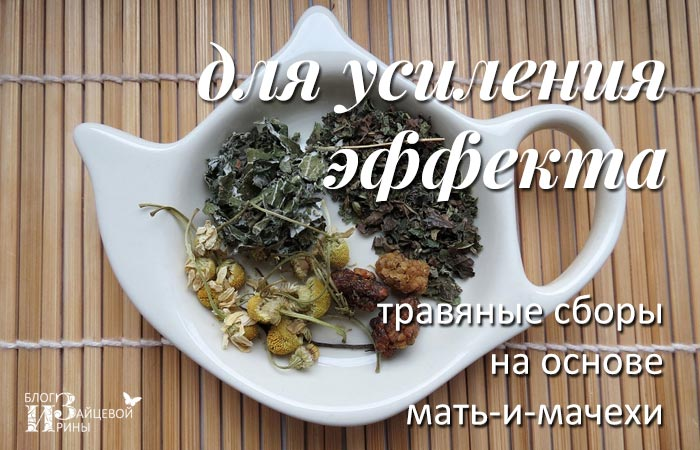 Мать-и-мачеха от кашля, Блог Ирины Зайцевой