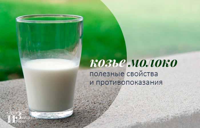 Козье молоко-польза и вред, полезные свойства и противопоказания, Блог Ирины Зайцевой