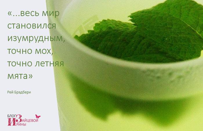 Чай с мятой. Чистая радость