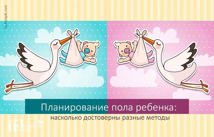 Заморские чудо-овощи, WebFermer-ВебФермер 89