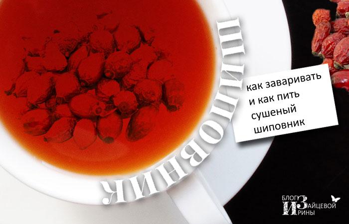 shipov_02