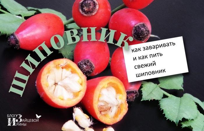 shipov_03