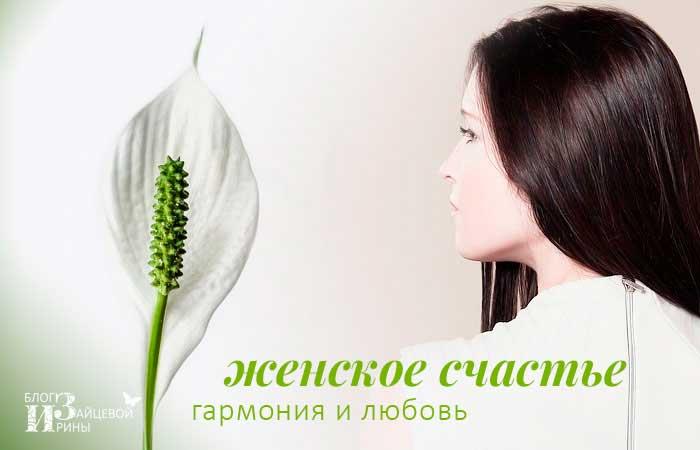 Спатифиллум женское счастье