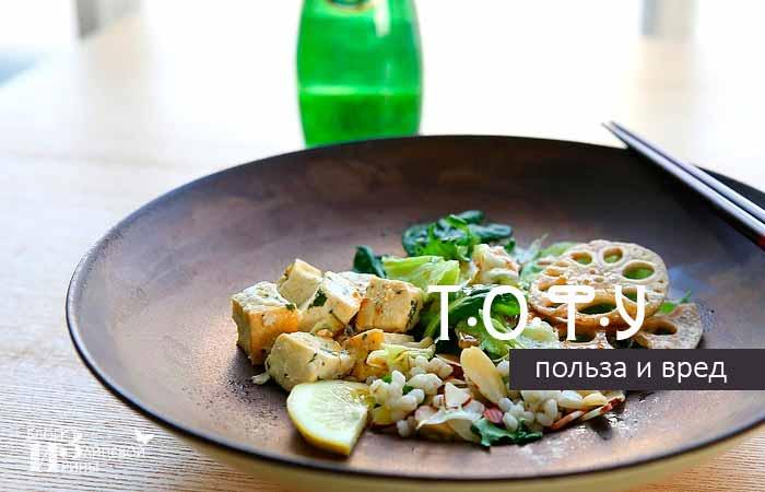Кладезь белков – соевый сыр тофу