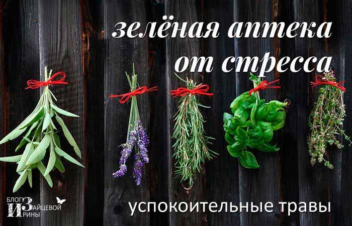 Успокоительные травы и средства.