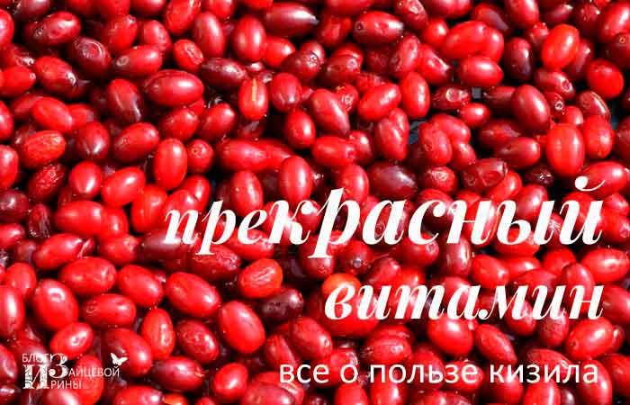 /ukreplyaem-zdorove-vmeste-s-kizilom.html