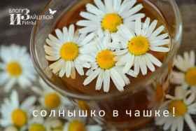 Солнышко в чашке. Ромашковый чай