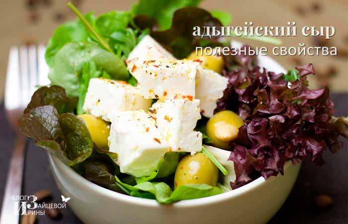 польза адыгейского сыра