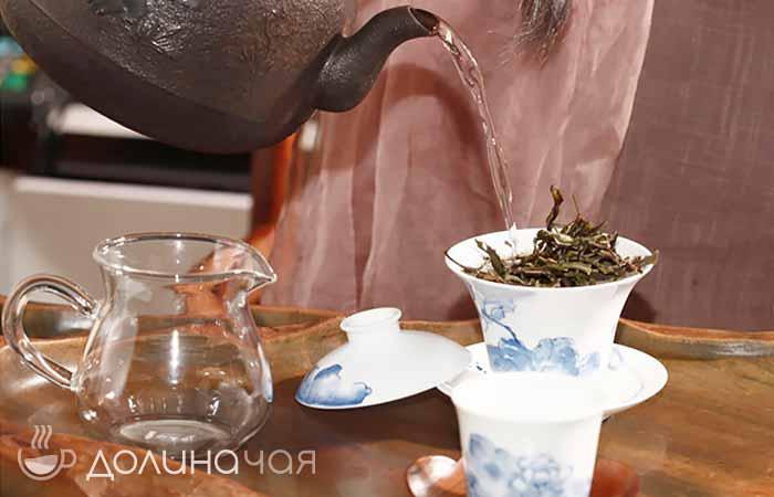 Фото влияние белого чая на организм