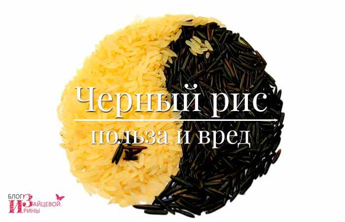 Польза и вред черного риса