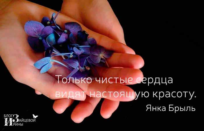 цитаты о красоте