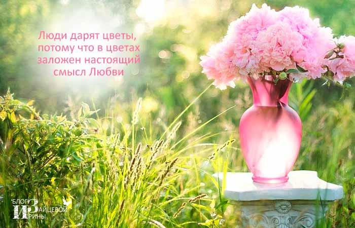 цитаты о цветах