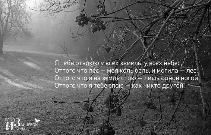 Стихи Марины Цветаевой о любви фото 2