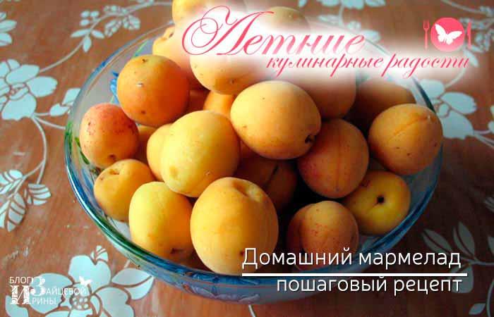 домашний мармелад из абрикосов фото 1