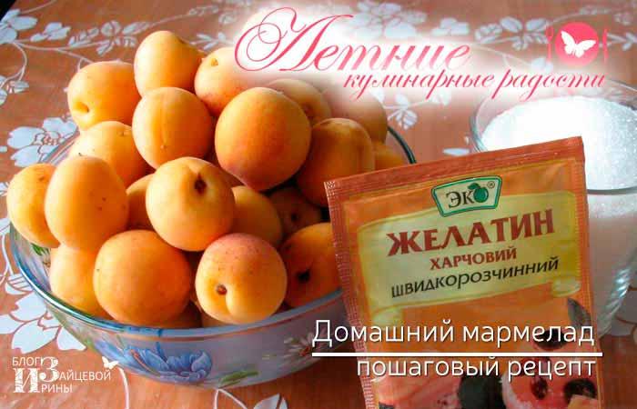 домашний мармелад из абрикосов фото 2