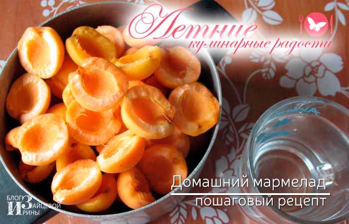 домашний мармелад из абрикосов фото 3