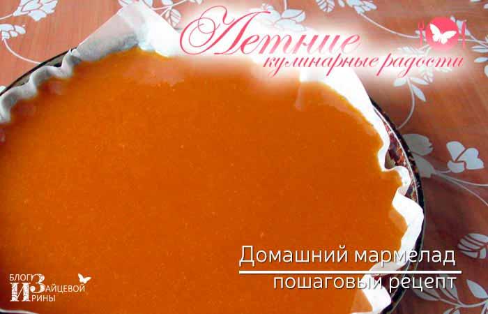домашний мармелад из абрикосов фото 6