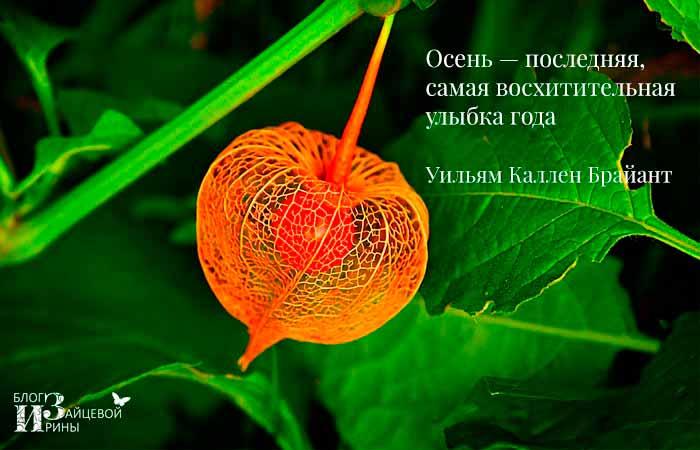 цитаты про осень красивые со смыслом