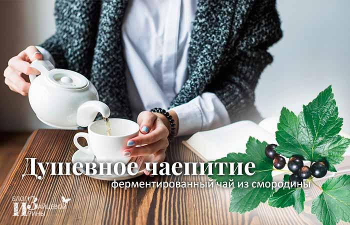 Ферментированный чай из смородины