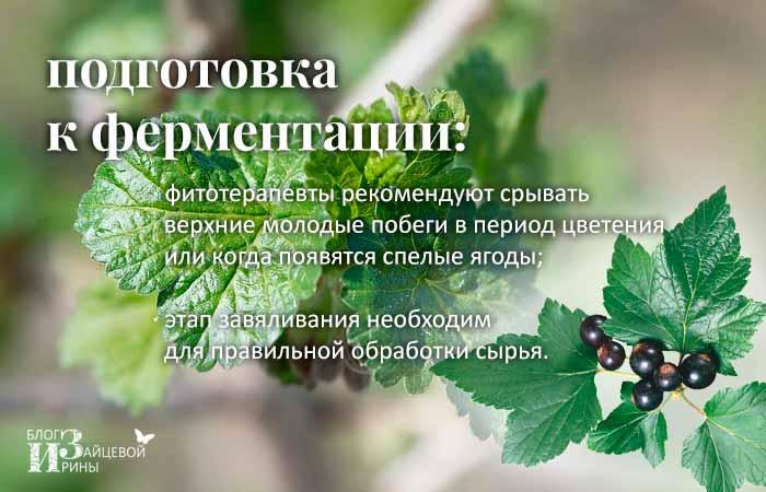 Завяливание листочков