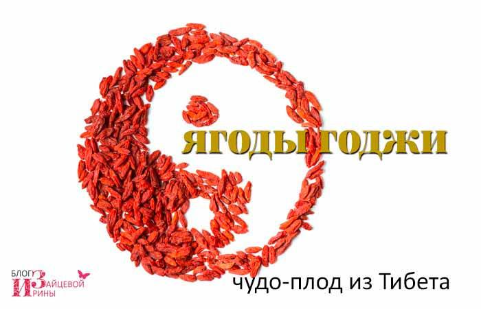 /yagody-godzhi-polza-i-vred.html