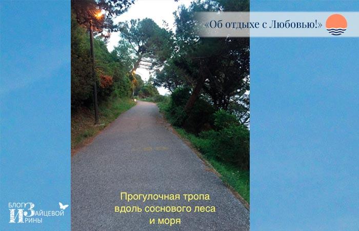 В Петровац есть две тропы