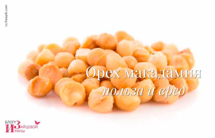 Польза и вред ореха макадамии