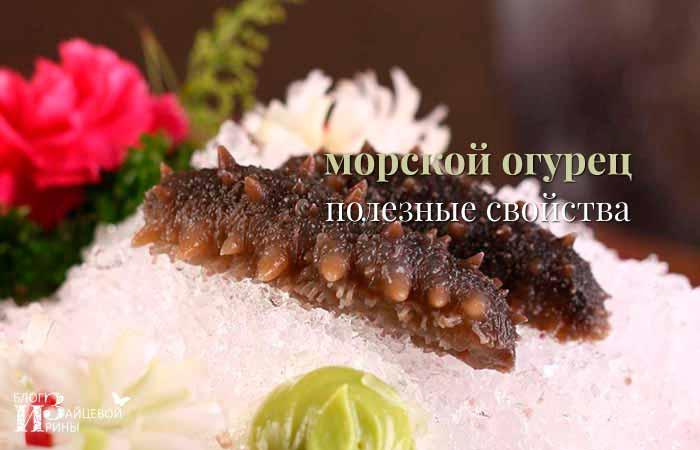 Полезные свойства морского огурца