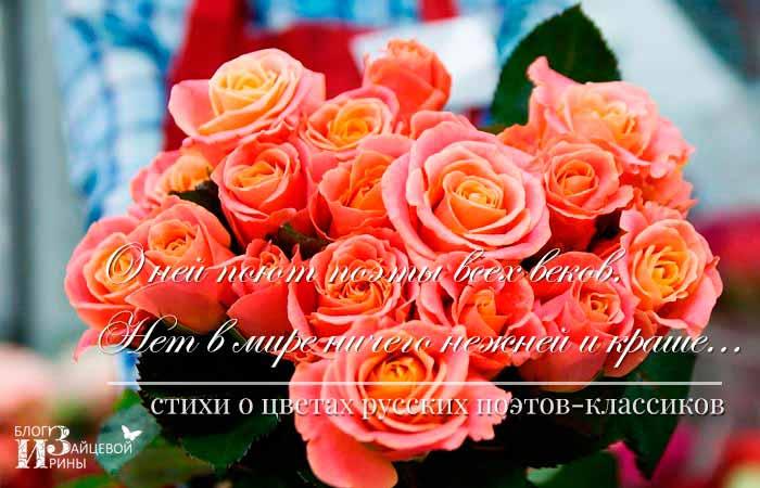 стихи про цветы короткие