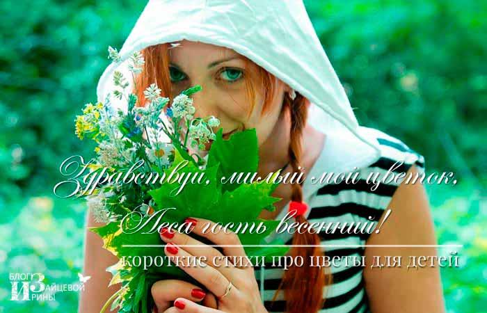 стихи о цветах русских поэтов классиков