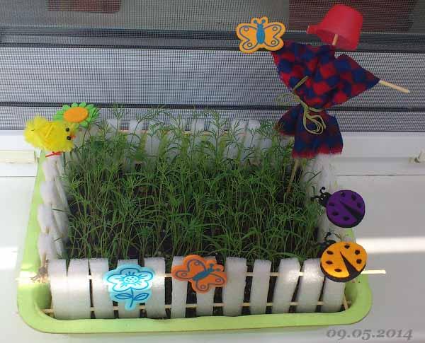 Выращиваем сами – огород на подоконнике / Поварёнок.ру
