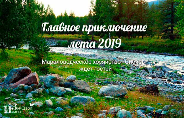 отдых в Сибири