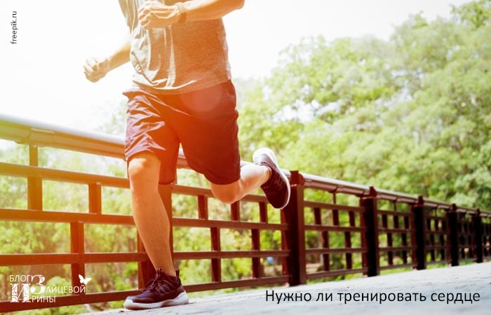 Нужно ли тренировать сердце