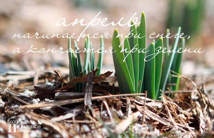 пословицы и поговорки про весну