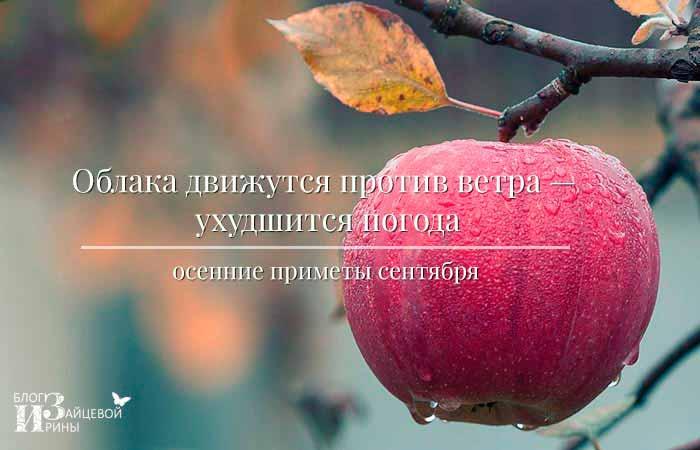 Осенние приметы сентября