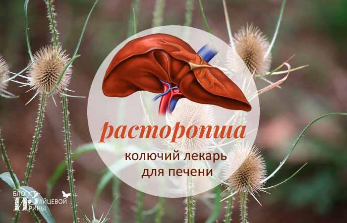 /rastoropsha-dlya-pecheni.html